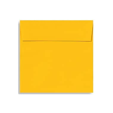 LUX 6 1/2 x 6 1/2 Square Envelopes 1000/Box) 1000/Box, Sunflower (EX8535-12-1000)
