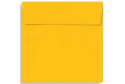 LUX 6 1/2 x 6 1/2 Square Envelopes 500/Box) 500/Box, Sunflower (EX8535-12-500)