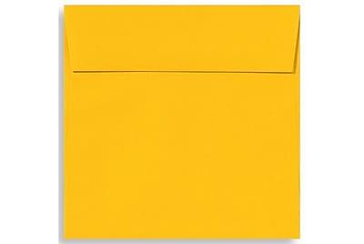 LUX 6 1/2 x 6 1/2 Square Envelopes 250/Box) 250/Box, Sunflower (EX8535-12-250)