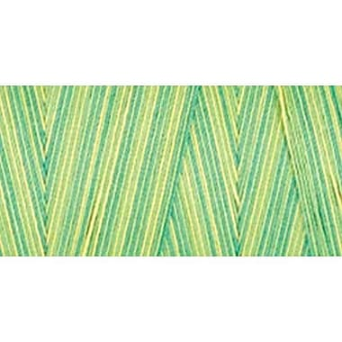 Star Mercerized Cotton Thread Variegated, Spring Meadow, 1200 Yards