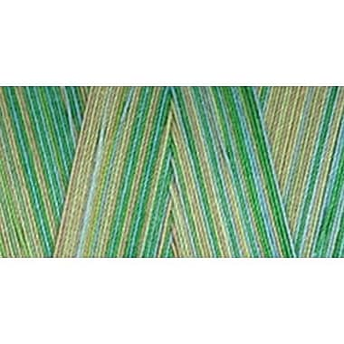 Star Mercerized Cotton Thread Variegated, Seedlings, 1200 Yards