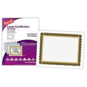 "Blanks/USA® 11"" x 8 1/2"" 60 lbs. Offset Large Certificate With Black/Gold Border, White, 50/Pack"