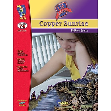Copper Sunrise Lit Link, Grade 7-8