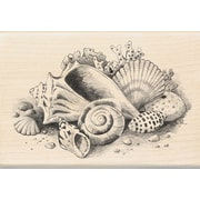 "Inkadinkado® 2 3/4"" x 4"" Mounted Rubber Stamp, Seaside Still Life"