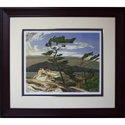 White Pine Framed by AJ Casson