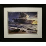 Forces of Nature Framed by Christopher Foster