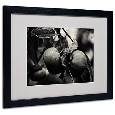 Trademark Fine Art 'Three Persimmons in the Rain' 16