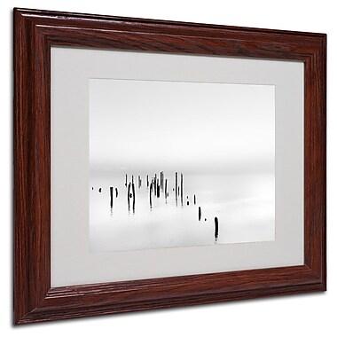 Trademark Fine Art 'Four Gulls' 11
