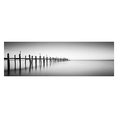 Trademark Fine Art 'China Camp Panoramic' 18