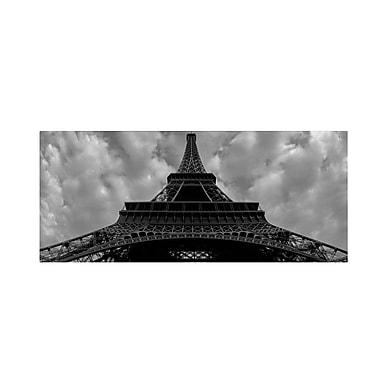 Trademark Fine Art 'Eiffel Panoramica' 10