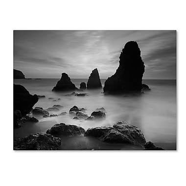 Trademark Fine Art 'Rodeo Beach I Black and White' 30