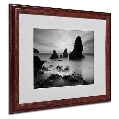 Trademark Fine Art 'Rodeo Beach I Black and White' 16