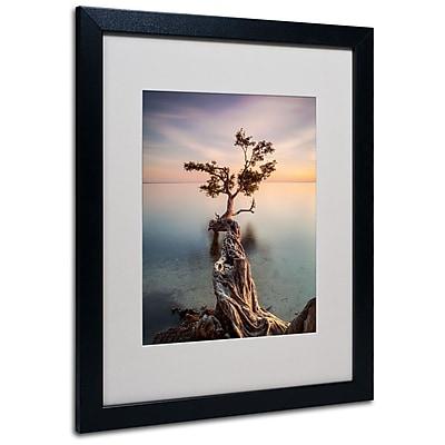 Trademark Fine Art 'Water Tree III' 16