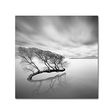 Trademark Fine Art 'Water Tree VII'