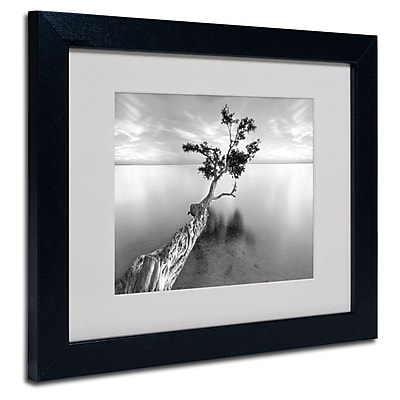 "Trademark Fine Art 'Water Tree XIII' 11"" x 14"" Black Frame Art"