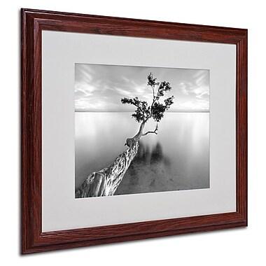Trademark Fine Art 'Water Tree XIII' 16