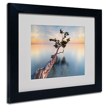 Trademark Fine Art 'Water Tree XIV'
