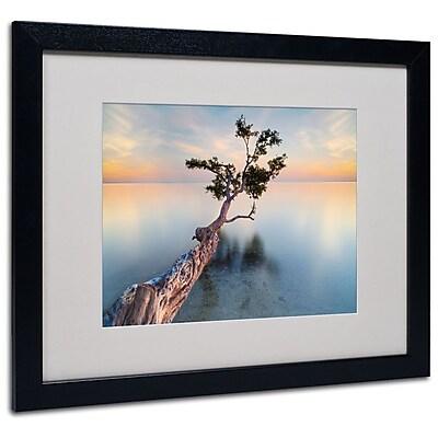 Trademark Fine Art 'Water Tree XIV' 16