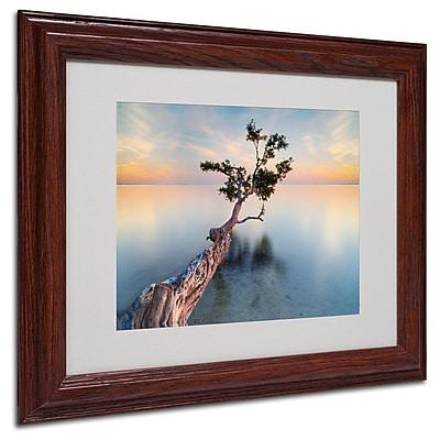 Trademark Fine Art 'Water Tree XIV' 11