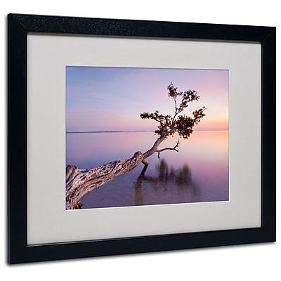Trademark Fine Art 'Water Tree XV' 16