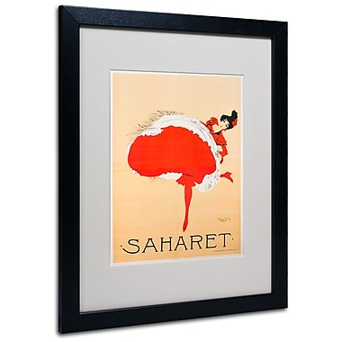 Trademark Fine Art 'Saharet' 16