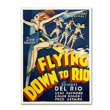 Trademark Fine Art 'Flying Down to Rio' 35