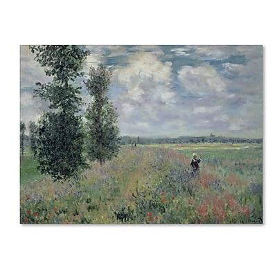 Trademark Fine Art 'The Poppy Field' 14