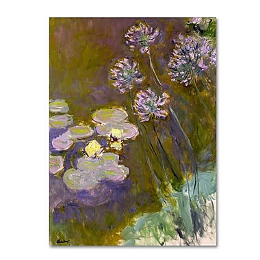 Trademark Fine Art 'Waterlilies and Agapanthus' 18