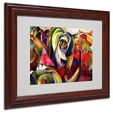 Trademark Fine Art 'Mandrill' 11