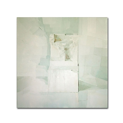 "Trademark Fine Art 'White' 24"" x 24"" Canvas Art"