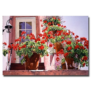 Trademark Fine Art 'Geraniums on the Stairs' 30
