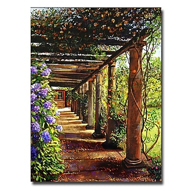 Trademark Fine Art 'Pergola Walkway' 35
