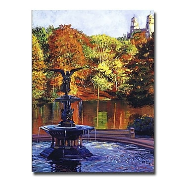 Trademark Fine Art 'Fountain at Central Park'