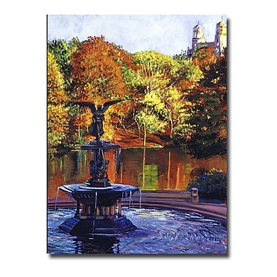 Trademark Fine Art 'Fountain at Central Park' 35
