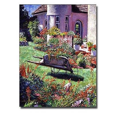 Trademark Fine Art 'Color Garden Impression' 18