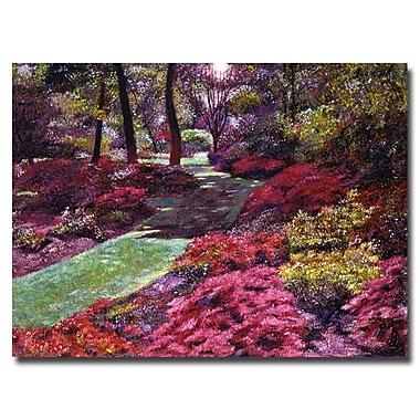 Trademark Fine Art 'Azalea Park'