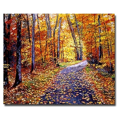 Trademark Fine Art 'Leaf Covered Road' 35