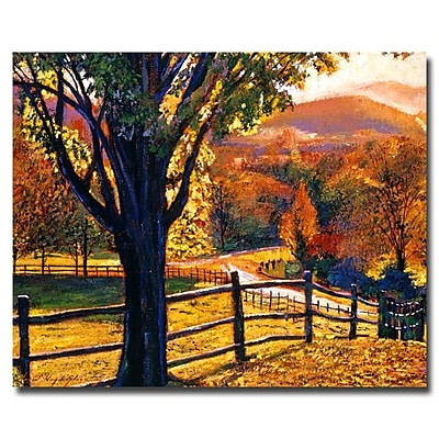 Trademark Fine Art 'Autumn Fire Colors' 35