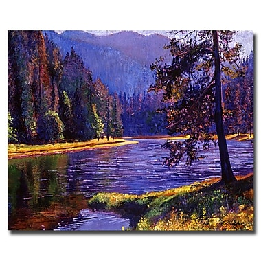Trademark Fine Art 'Lone Pine' 35