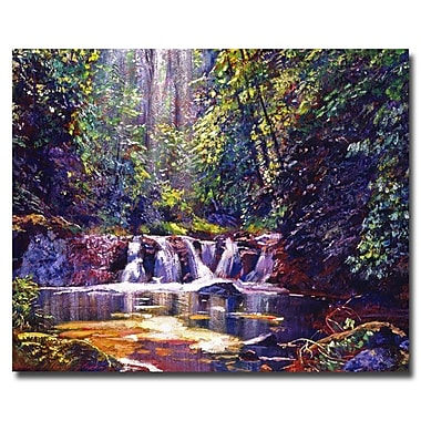 Trademark Fine Art 'Foaming Water Forest'