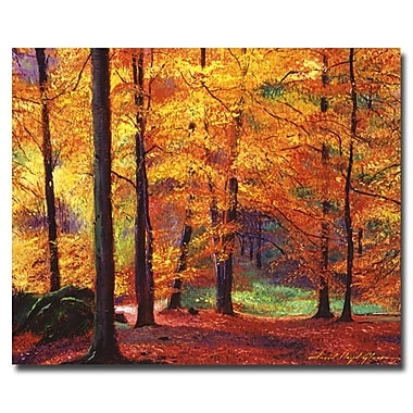 Trademark Fine Art 'Autumn Serenity' 35