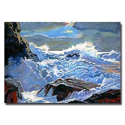 Trademark Fine Art 'Foaming Sea' 16