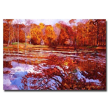 Trademark Fine Art 'Scarlet Maples'