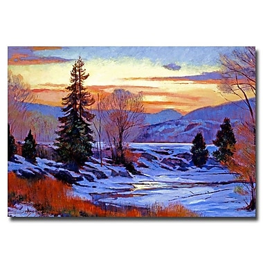 Trademark Fine Art 'Early Spring Daybreak' 30