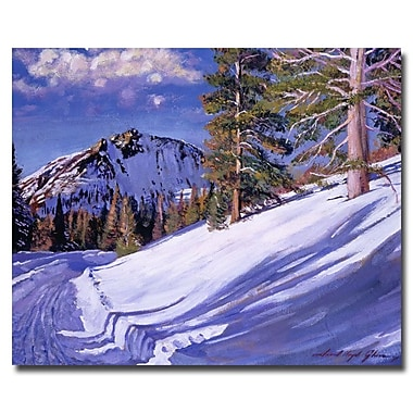 Trademark Fine Art 'Snow Mountain Road' 35