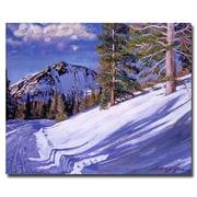 "Trademark Fine Art 'Snow Mountain Road' 35"" x 47"" Canvas Art"