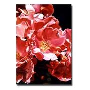 "Trademark Fine Art 'Wild Roses' 30"" x 47"" Canvas Art"
