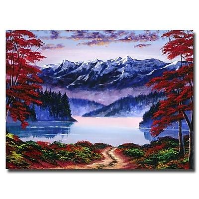 Trademark Fine Art 'Morning Glory' 24