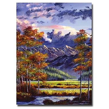 Trademark Fine Art 'Mountain River Valley'