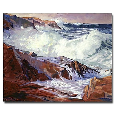 Trademark Fine Art 'Monteray Coast' 35